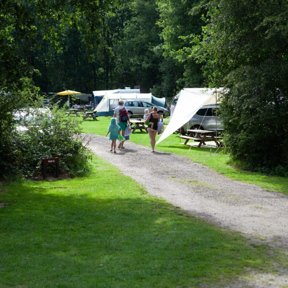 camping Hanestede fries dentse wold
